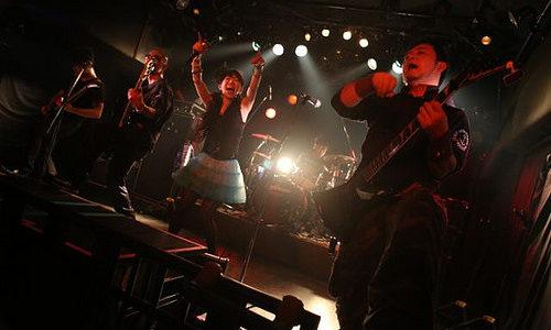 2013年★ライブ情報